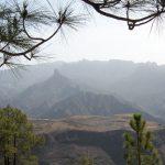 Gran Canaria Wandern Lanzatrekk Lanzarote Wald
