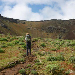 Wandern auf Lanzarote Tour 5: Monte Corona Krater