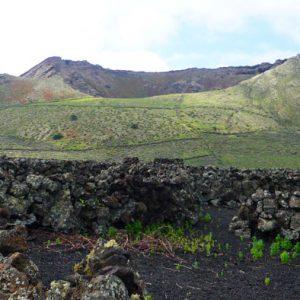 Wandern Lanzarote Tour 5: Monte Corona Vulkanismus