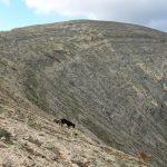 Lanzarote Wandern Lanzartrekk Tour 3 1
