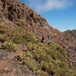 Wandern Lanzarote Tour 7