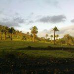 Lanzarote leicht und flach Tour 3 Haria