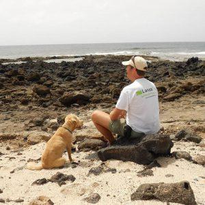 Lanzarote Norden Küste