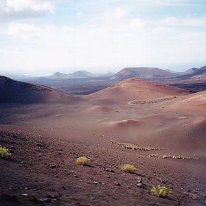 Lanzarote Lava Flechten Basalt